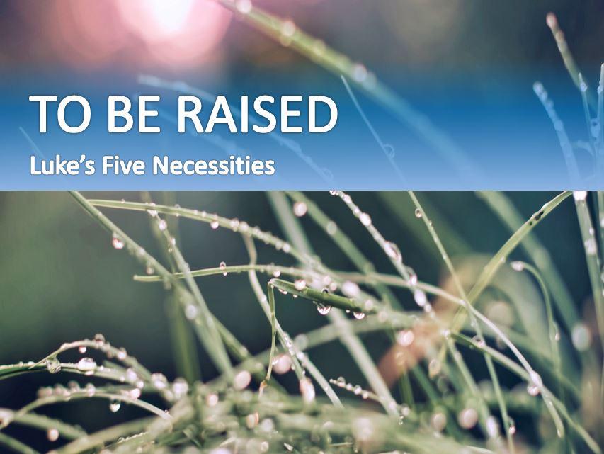 necessary5