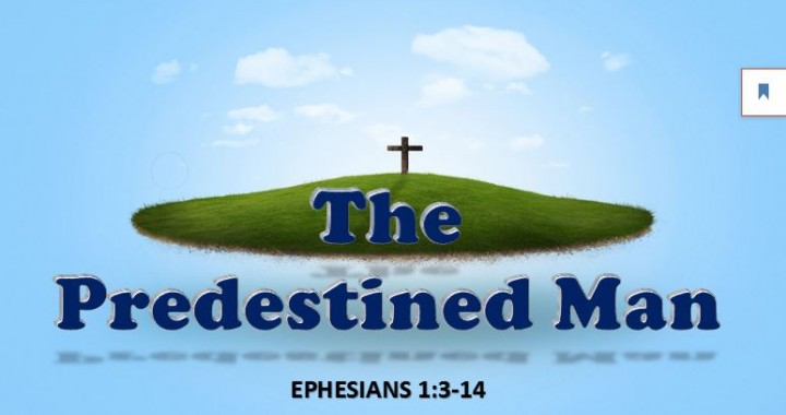 The Predestined Man