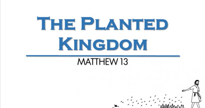 The Planted Kingdom
