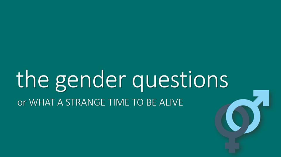 Introduction to Gender Questions